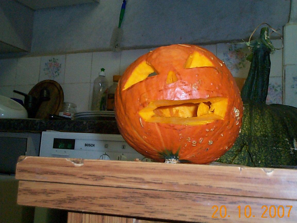 kuerbis  halloween  gettowebde